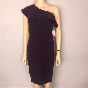 Calvin Klein Aubergine One Shoulder Ruffle Dress